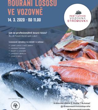 Bourání lososů ve Vozovně